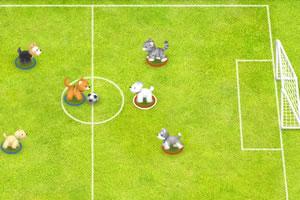 小狗足球赛
