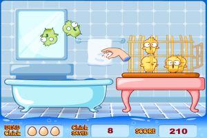 帮小鸡洗澡