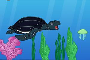 迭戈与海龟