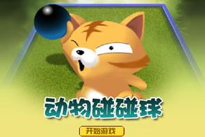 动物碰碰球