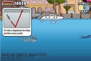 悉尼鲨鱼积分版
