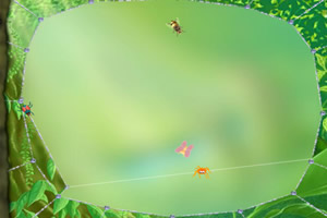 蜘蛛吐丝吃叶