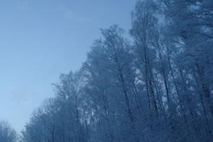 隐藏的雪花