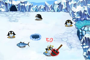 阿达坑企鹅