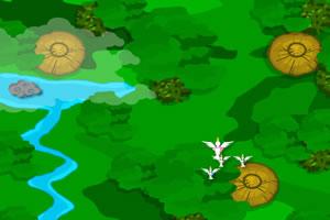 大雁环游世界