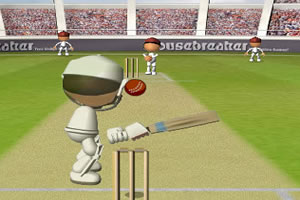板球大赛2