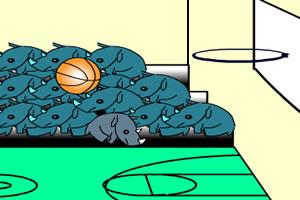 犀牛篮球赛