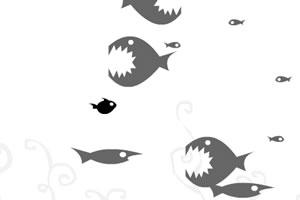 黑白大鱼吃小鱼