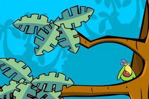 鹦鹉找芒果
