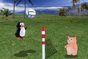 企鹅的排球赛