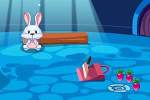 可爱宠物兔