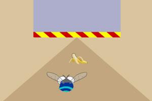 苍蝇躲避障碍