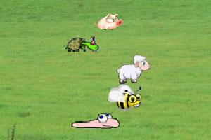 动物大赛跑