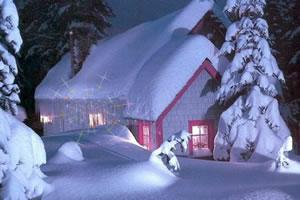 隐藏的星之雪屋