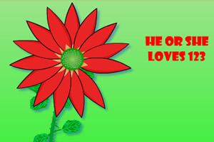 花瓣测爱情