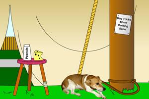 动物收容所逃脱2