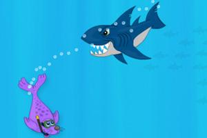 海豹斗鲨鱼