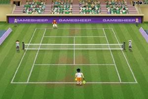 网球冠军争夺赛