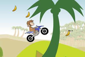 小猴骑摩托