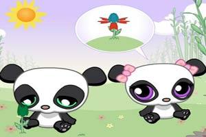 熊猫的爱情花朵