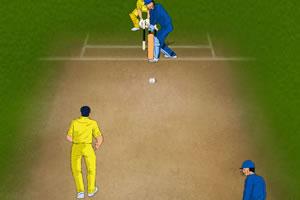 2011板球大赛