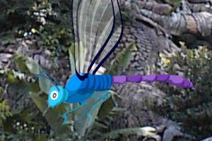 寻找隐藏的蜻蜓