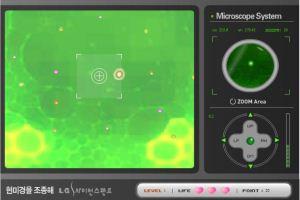 显微镜观察