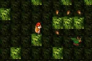 松鼠吃松球