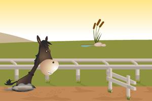 小驴障碍跑3