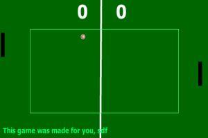 双人乒乓球