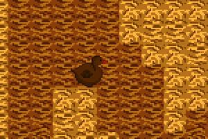 鸭子闯迷宫
