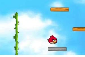 愤怒的小鸟之跳跃