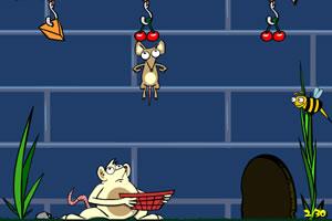 聪明的老鼠