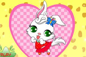漂亮的小兔子