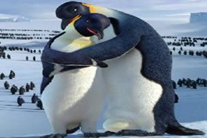 可爱企鹅拼图