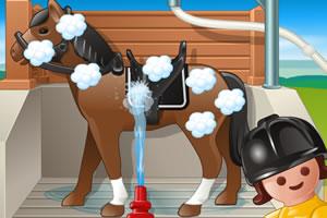 为赛马洗澡