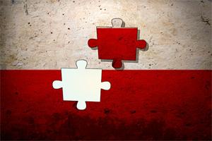 波兰战旗拼图