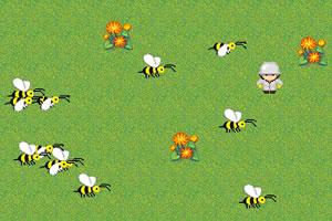 疯狂的小蜜蜂
