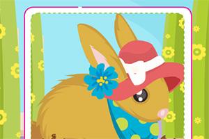 照顾兔宝宝