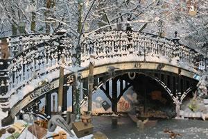 雪桥找东西