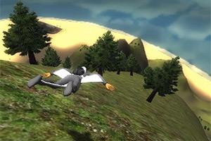 3D滑翔世锦赛
