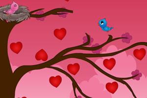 可爱的爱情鸟
