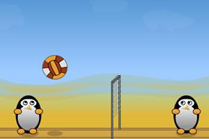 企鹅也爱打排球