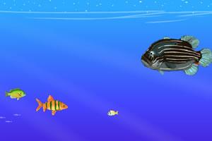 深海鱼吃鱼