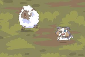 坏狗逗羊玩