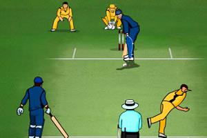 板球争霸排名赛