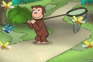 小猴子抓虫子