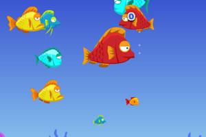 小鱼成长的故事