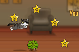 一只特立独行的猫无敌版