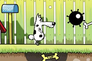 可爱狗狗找骨头